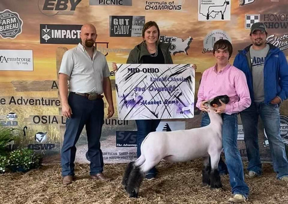 Third Overall Market Lamb Mid-Ohio Lamb Classic Sired By: Strictly Business Shown By: Weston Stevens