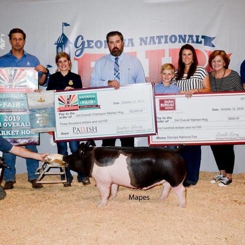 3rd Overall Market Hog  Georgia National Fair  Shown by: Carolyne Turner  Sired by: Dirty Love'n