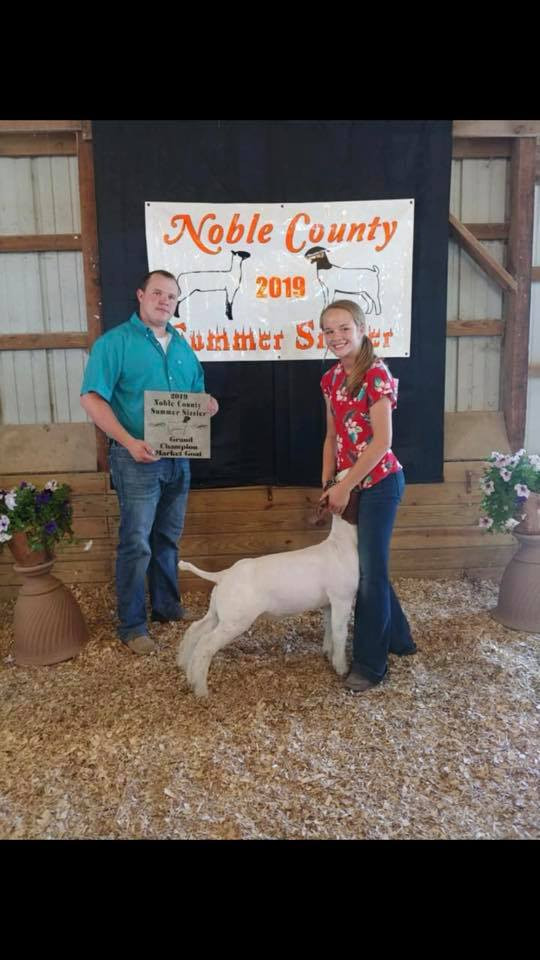 Champion Goat 2019 Noble County Summer Sizzler Shown by: Alicia Graham Bred by: Carr Show Goats Placed by: Adam Family Club Lambs