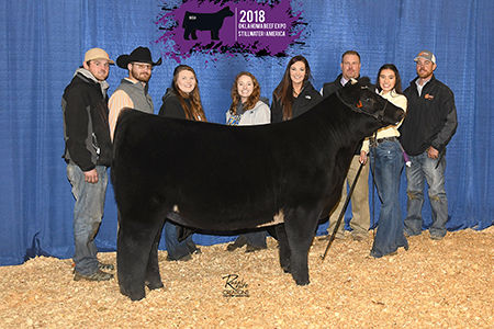 3rd-Overall-Progress-OK Beef Expo-Haley