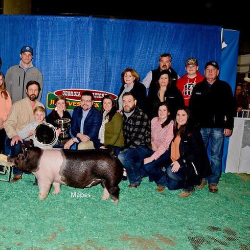 Grand Champion Market Gilt Georgia Junior National Livestock Show Carolyne Turner