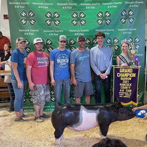 Grand Champion Barrow  Hancock County Fair, IN Shown by: Hayden Joyce Sire: Encore Dam: Legit  Bought in March 2 @showpig_com