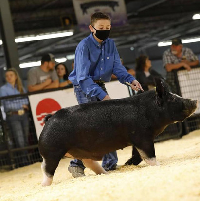 Arkansas State Fair  Res. Champion Berk Market Hog  Jett Cobb
