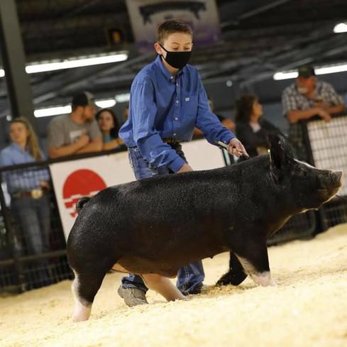 Arkansas State Fair  Res. Champion Berk Market Hog  Jett Cobb