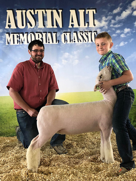 Champion White Face Show A & B 4th Overall Market Lamb Show A 5th Overall Market Lamb Show B 2018 Austin Alt Memorial Classic Shown by JD Morrical Shoot Yeah x Witness