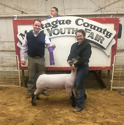 Grand Champion Market Lamb Montague Coun