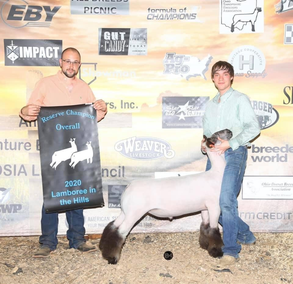 Reserve Champion Overall   Sired By: Strictly Business Shown By: Weston Stevens