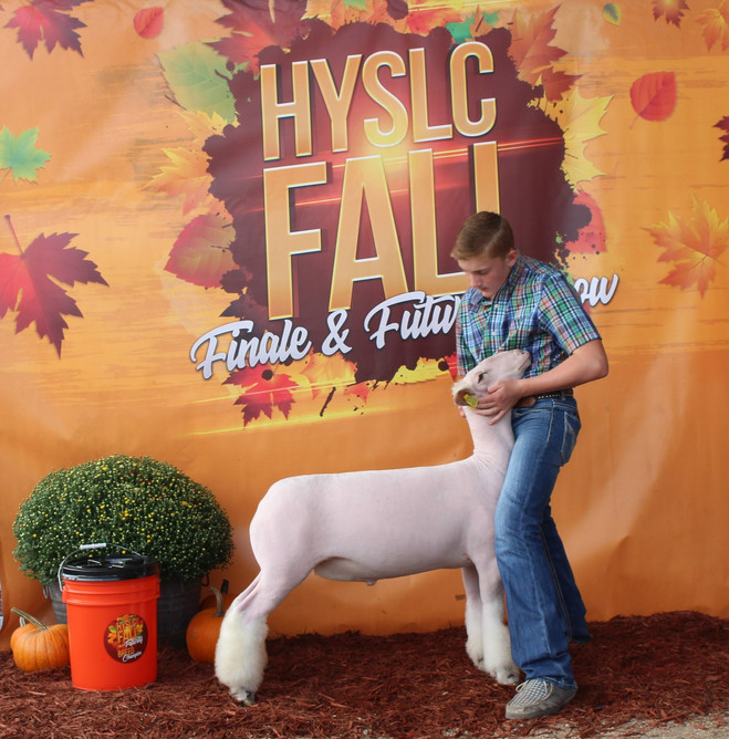 Champion White Face Market Lamb 2020 HYSLC Fall Classic  Shown By: JD Morrical  Sire: Colorblind