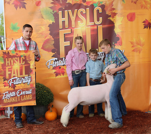 Champion White Face Market Lamb & Eighth Overall Market Lamb 2020 HYSLC Fall Futurity  Shown By: JD Morrical  Sire: Colorblind