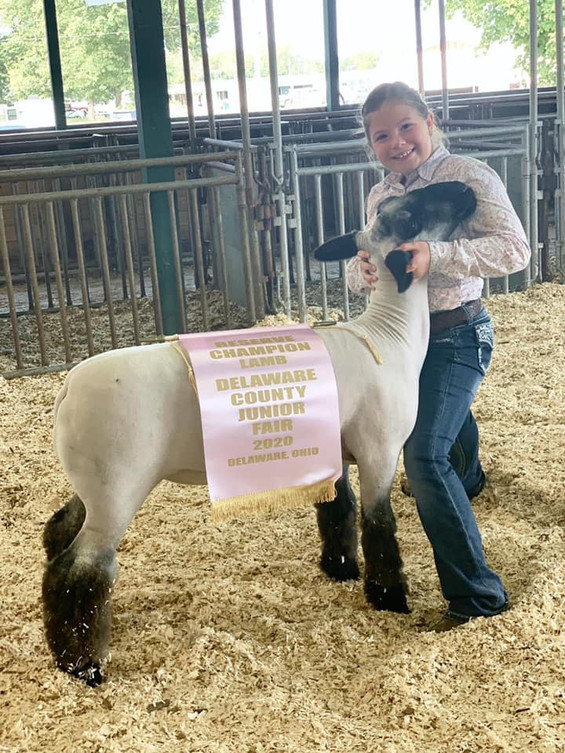 Reserve Grand Champion Market Lamb Delaware County Junior Fair  Sired By: Strictly Business Shown By: Ella Altizer