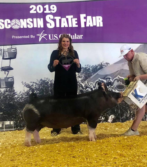 WISCONSIN STATE FAIR GILT SHOW Reserve Champion Berkshire Gilt Shown by: Paige Brock  Bred by : Schmaling Bros.Berkshires  Sired by : Non Stop 48-1 (Mauck)