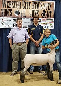 Reserve Champion Commercial Ewe Show 1 3rd Overall Commercial Ewe Show 2