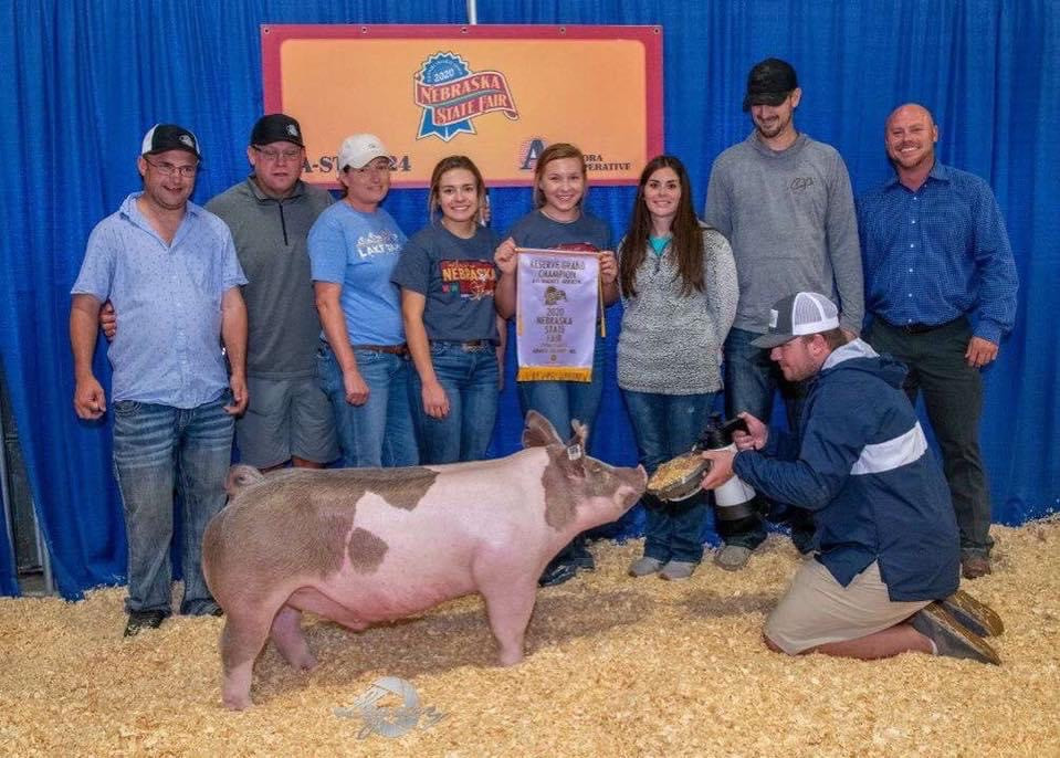 Nebraska State Fair Res Grand Overall Barrow Bailey Langemeier Sired By Quick & Dirty Bred By Mauck