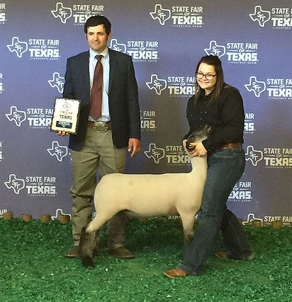 Reserve Grand Champion Wether Dam State
