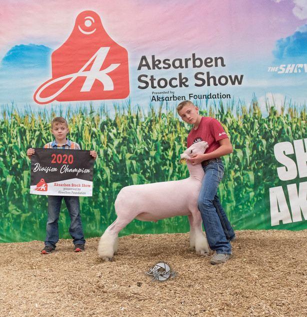 Champion White Face Market Lamb 2020 Aksarben Stock Show  Shown By: JD Morrical  Sire: Colorblind