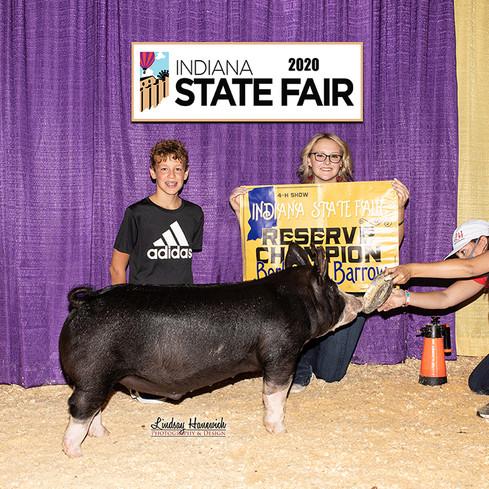 Indiana State Fair  Res. Champion Berk Barrow  Kelsey Clamme