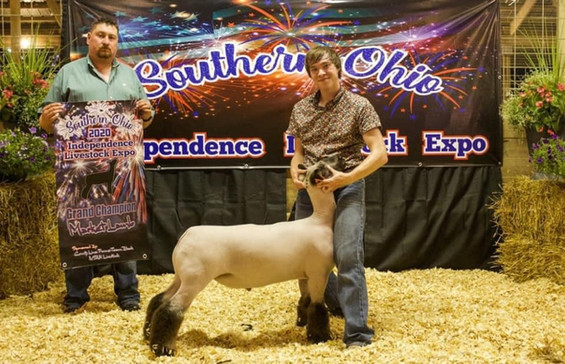 Grand Champion Market Lamb Southern Ohio Independence Livestock Expo  Sired By: Strictly Business Shown By: Weston Stevens