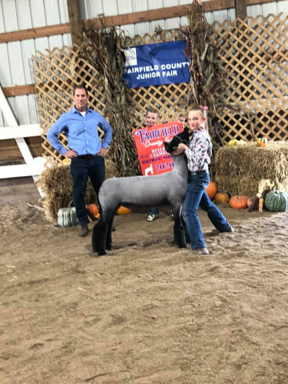 Reserve Grand Champion Market Lamb  Fairfield County Fair  Sired By: Top Tier Shown By: Evelyn Koehler