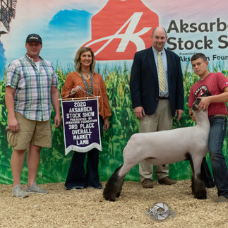 3rd Overall Market Lamb