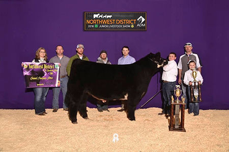 Grand - NW Dist Livestock Show - Colby K