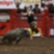 2016 RRC Bullfight.jpg