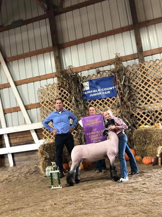 Grand Champion Market Lamb Fairfield County Fair  Sired By: Temper Tantrum Shown By: Stella Koehler