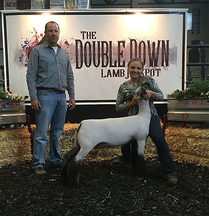 Grand Champion Market Lamb  Double Down