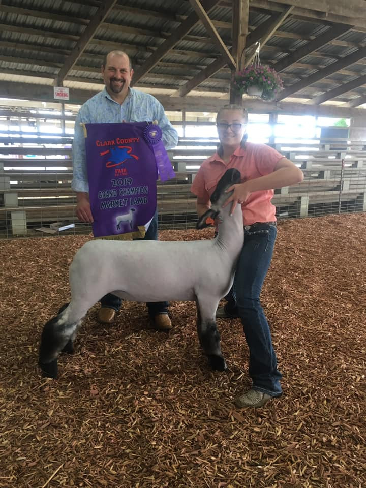 Grand Champion Market Lamb 2019 Clark County Fair Shown by: Gabby McNier Sired by: Strictly Business