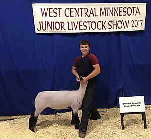 Grand Champion Market Lamb