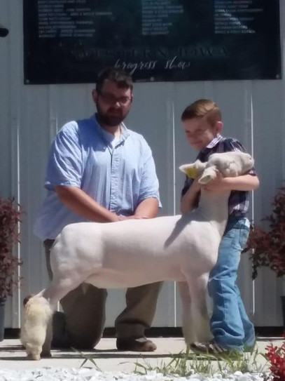 Champion White Face Market Lamb & 4th Overall Market Lamb 2019 Western Iowa Progress Show Shown By: Tucker Morrical  Sire: Colorblind