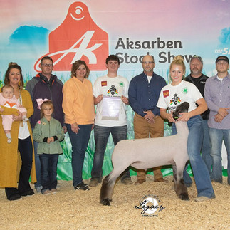 3rd Overall Market Lamb