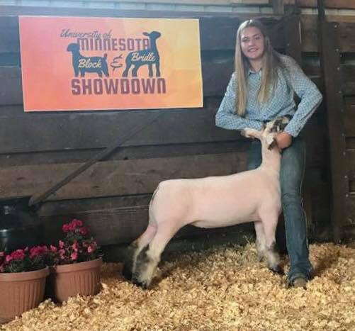 Reserve Champion Speckle 2018 Golden Gopher Showdown Show A & B Shown by Kaydi Anderson Shoot Yeah x Witness