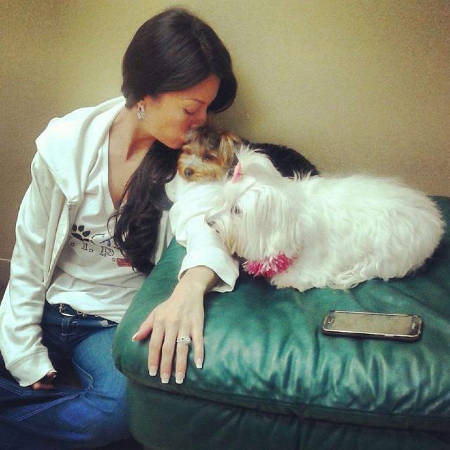 Instagram - @doggievip #happydog #smilingdog #dogdaycare #petlovers #adorable #c