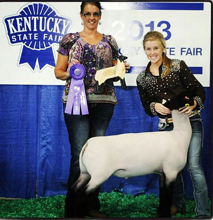 Champion-Suffolk-Ky-State-Fair.jpg