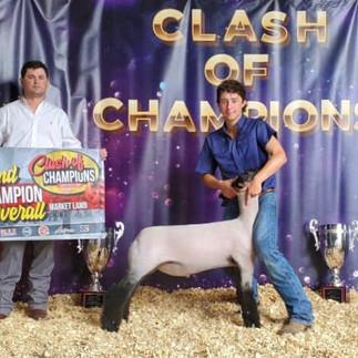 Grand Champion Show 2