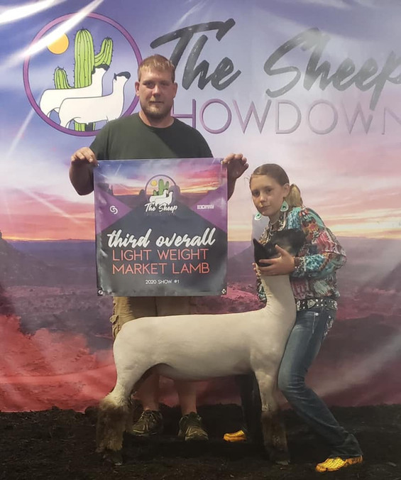 Third Overall Light Weight Market Lamb  The Sheep Showdown Sired By: Black Betty  Shown By: Trinity Daley