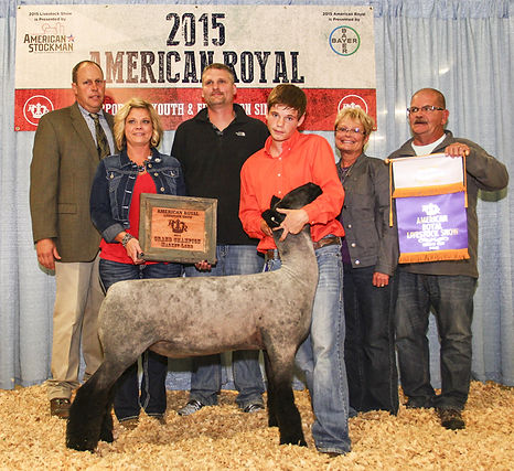 Grand Champion Market Lamb  2015 America