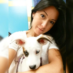 Instagram - DOGGIE VIP MAKES ME HAPPY @doggievip #happydog #husky #huskylove #hu