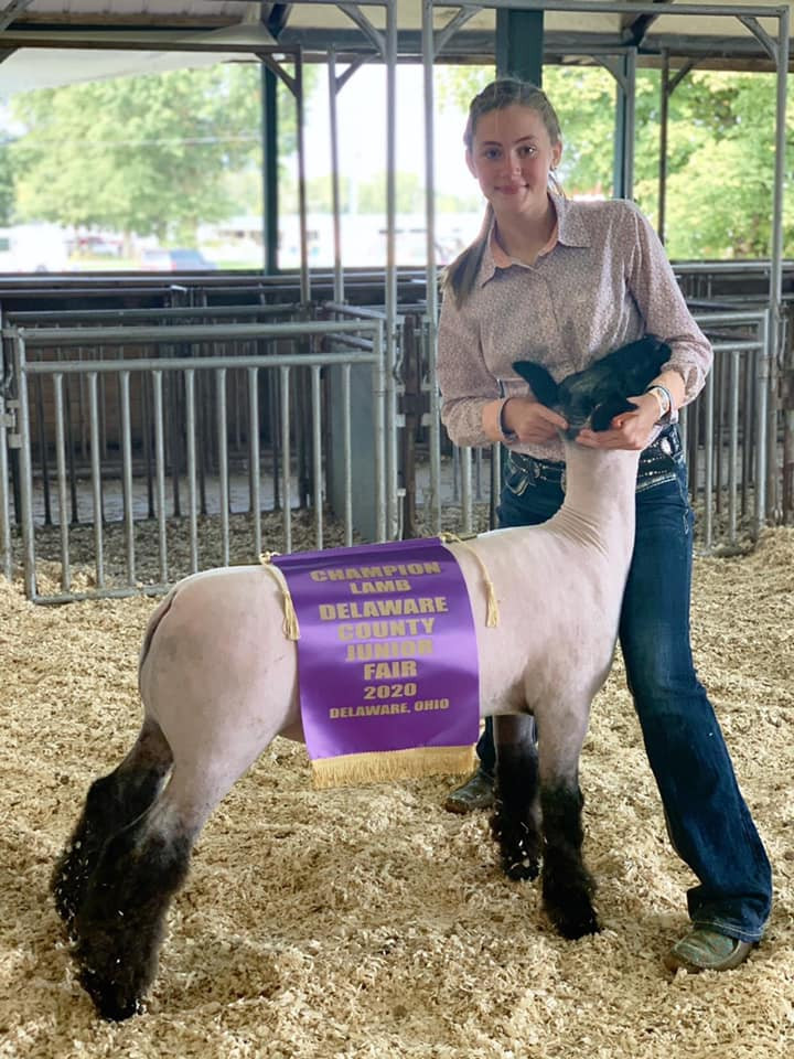 Grand Champion Market Lamb Delaware County Fair  Sired By: Strictly Business  Shown By: Aubrey Altizer