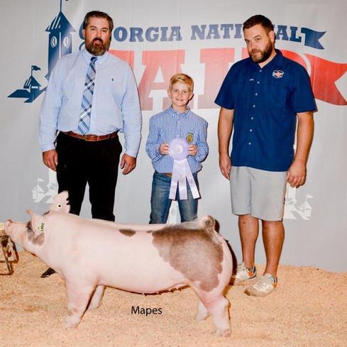 Res Champion Div 2 Cross Market Hog Georgia National Fair  Ret Turner