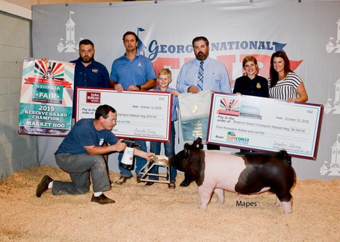 Res. Grand Market Hog Georgia National Fair  Shown by: Carolyne Turner  Bred by: Mauck Show Hogs  Sired by: Cruel (Brockman Farms)