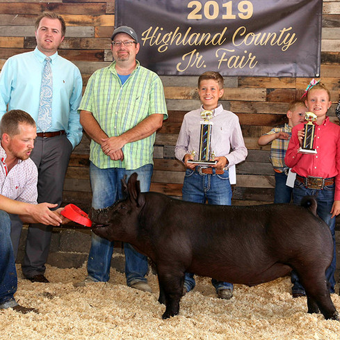 Res. Champion Middle Cross  Highland County Fair, OH Shown by Winkler Family