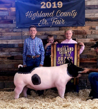 Congrats to the Winkle Family  Grand Champion Market Hog  Highland County Fair, OH  Sired by: Dirty Love'n