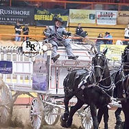 2018 RRC Young Living Percherons.jpg