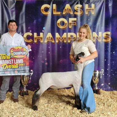 Grand Champion Show 1 & 3rd overall Show 2