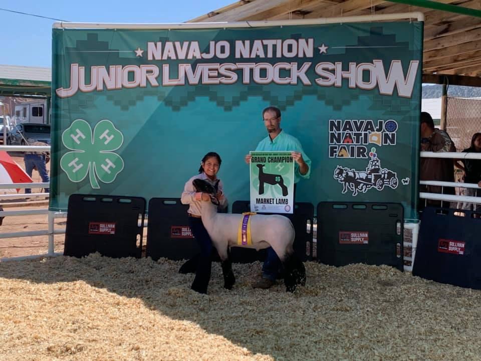 Grand Champion  Navajo Nation Junior Livestock Show Shown by: Tatum Lantana