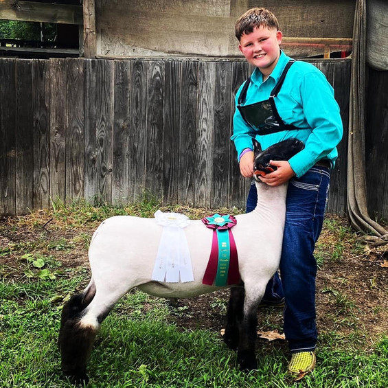 Third Overall Market Lamb Athen County Fair Shown By: Brice Stack