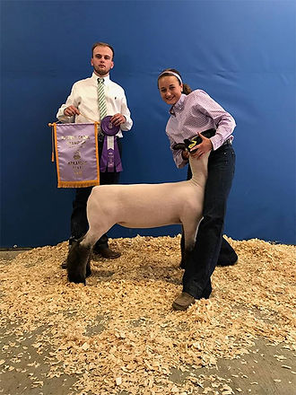 Reserve Grand Arkansas Spring Show.jpg