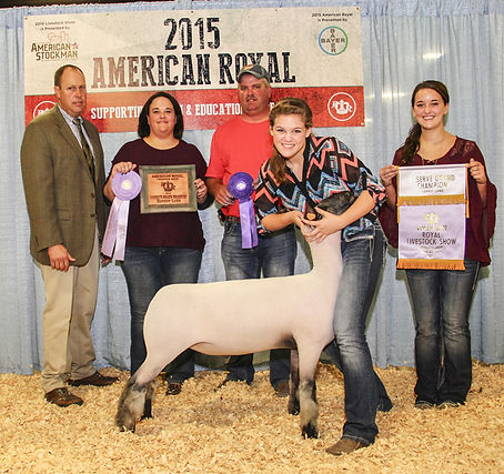 Reserve Grand Champion Market Lamb  2015