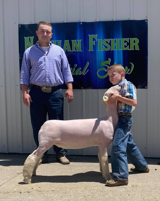 Champion White Face Commercail Ewe & 3rd Overall Ewe 2020 Nathan Fisher Memorial Jackpot, IA Show 1 & 2 Shown By: Tucker Morrical  Sire: Colorblind